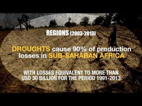 The impact of disasters on agriculture and food security