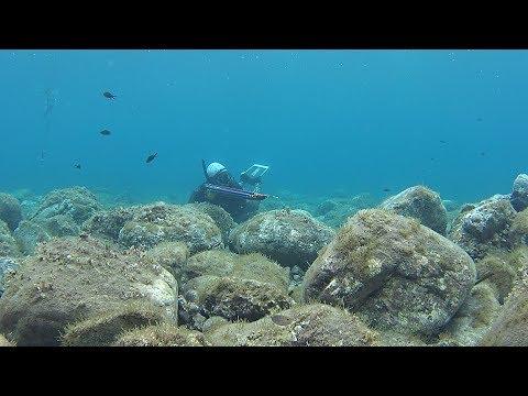 Spearfishing Shallow 🦀 - Ρηχό Ψαροντούφεκο ✔