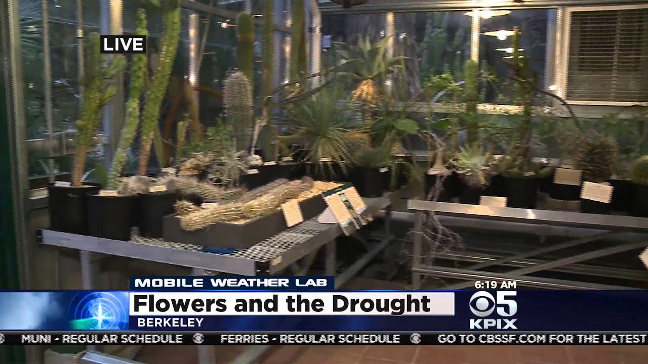 Mobile Weather Lab-UC Botanical Gardens - YouTube