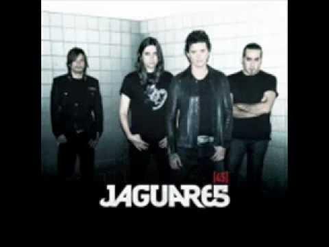 jaguares visible