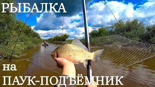 ЗДОРОВЕННЫЕ КАРАСИ на ПАУК в закоряженной сибирской реке Рыбалка на ПАУК ПОДЪЁМНИК 2021