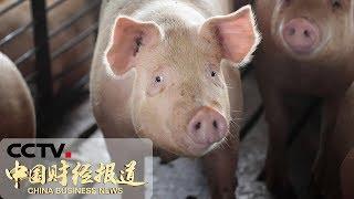 [中国财经报道] 路透社:中方停购美农产品打击美农业 | CCTV财经