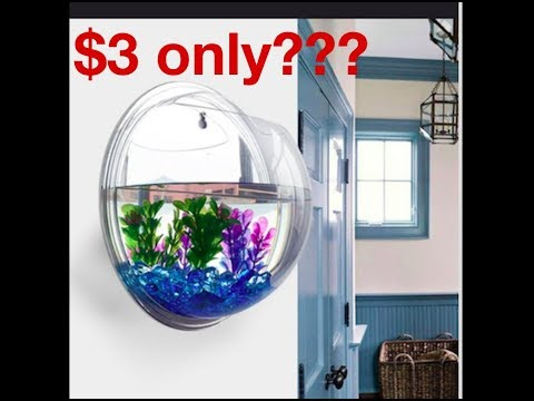 Fish Tank For Only $3 From The Wish App
