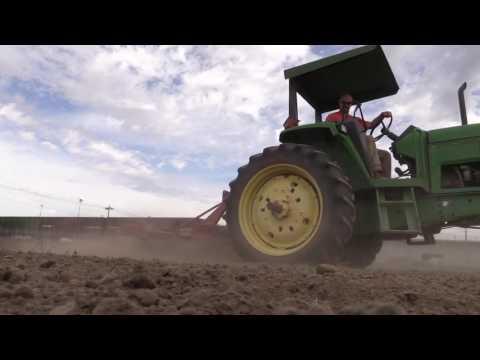 Farming at WSP