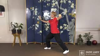 Q & A 1: Celestial Tai Chi College Yang Tai Chi Level 1