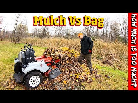 Fall Cleanup- Mulching Vs Bagging. Which is better for your yard?
