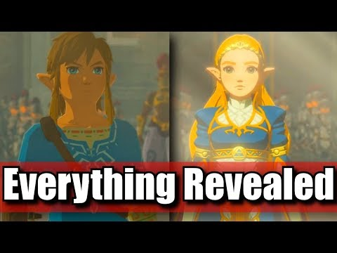 Everything Released in Champions Ballad Breath of the Wild Zelda