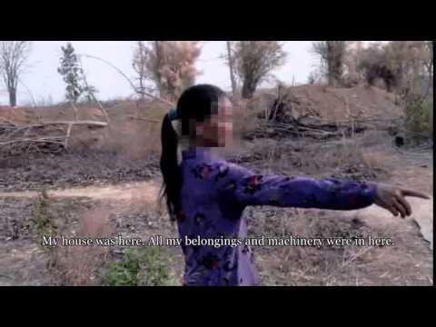 Global Witness Report:  HAGL chiếm đoạt đất đai, khai thác gỗ bất hợp pháp