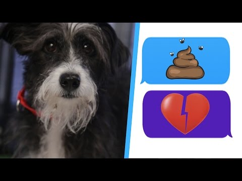 meet cute dating app