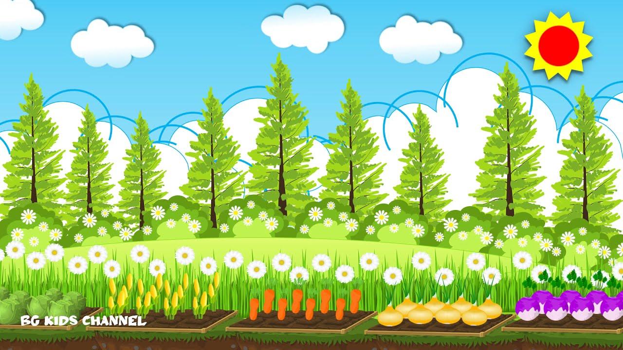 8 แบบ Background free download แจกฟรี วีดีโอพื้นหลังสอนออนไลน์/ขายออนไลน์น่ารักสดใส # สวนผักน่ารักๆ