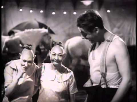 Freaks 1932 Highlights