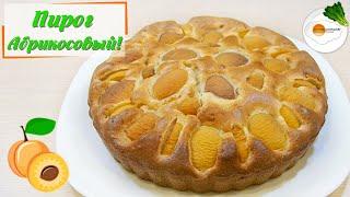 Пирог с абрикосами – простой рецепт очень вкусного пирога (apricot cake)