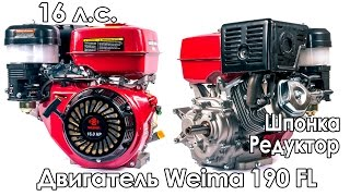 Двигатель с редуктором Weima 190 FL (16 л.с., 1800 об/мин)(, 2016-04-22T12:02:06.000Z)