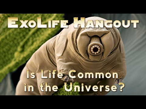 Is Life Common in the Universe?