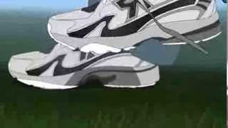 The Big Shoe - Macro Animation