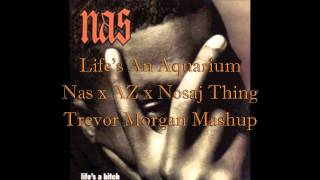 Life's An Aquarium (Nas x AZ x Nosaj Thing)