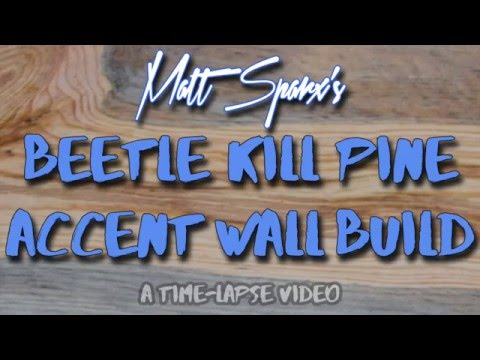 Matt Sparx's Blue Pine Accent Wall Time-Lapse