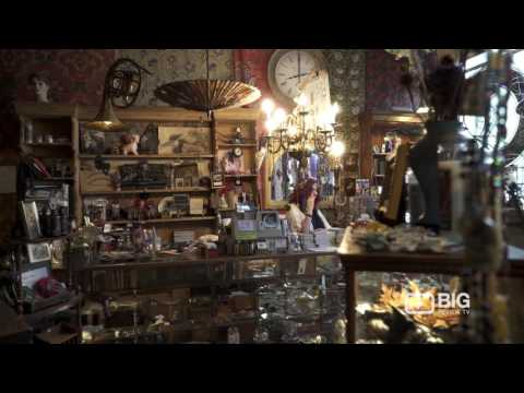 Salmagundi West Antique Store Vancouver for Oddities, Taxidermy and Collectables