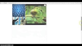 Fibonacci trucos divertidos youtube jonathanmelgoza