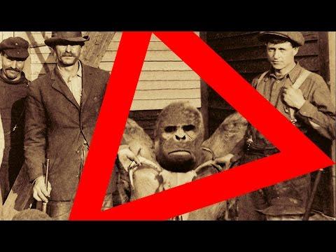 ★ Echter BIGFOOT / SASQUATCH wurde in Pennsylvania USA in ca. 1870 gefangen und getötet!