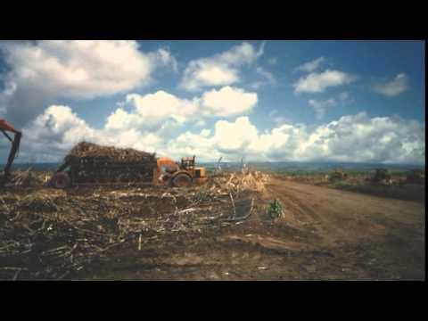 Waialua Jubilee -- Aloha to WACO Sugar Plantation