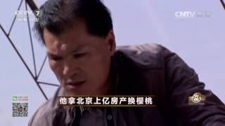 20170424 致富经  他拿北京上亿房产换樱桃