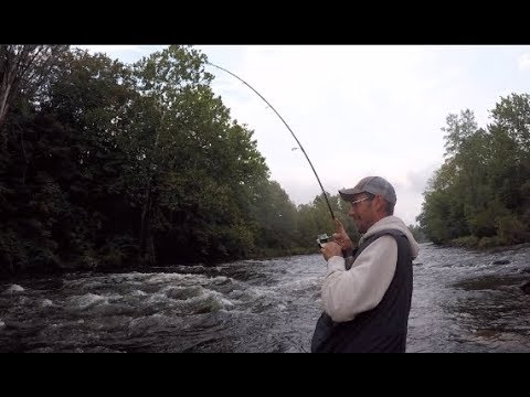 Day 1 Salmon Fishing the Salmon River - The Futility