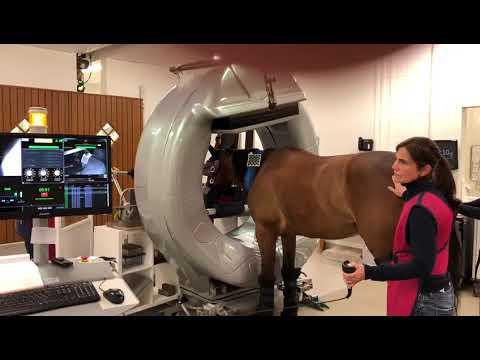 Tomografia computadorizada na clínica Bargteheide na Alemanha