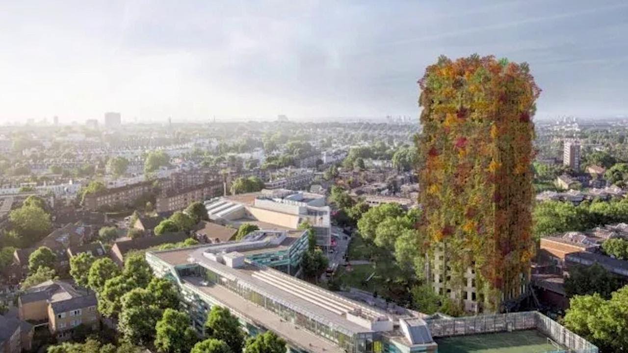 Foreste di città. Perché investire in alberi conviene a tutti: i modelli di Prato, Torino e Milano