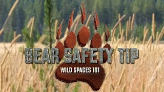 Bear Safety Tip: Wild Spaces 101