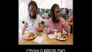 ГМО -оружие или вредная добавка!