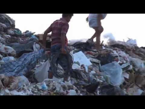Illegal trash pickers raid UAE landfill