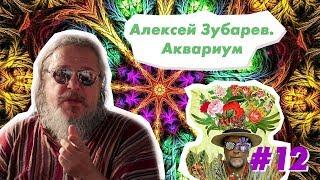 Скачать 12 параллельНО ИНДИЯ Алексей Зубарев Концерт группы АКВАРИУМ в Арамболе