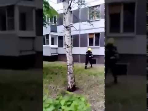 В Тольятти агрессивные вороны атакуют людей