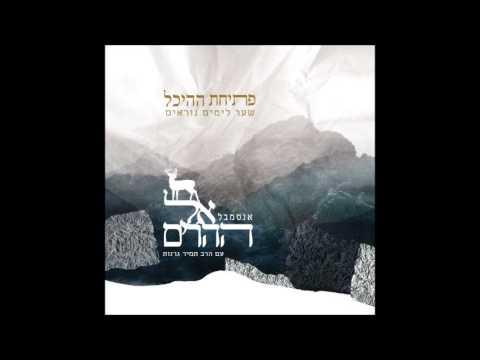 אנסמבל אל ההרים - כבקרת - מתוך האלבום 'פתיחת ההיכל'