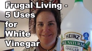 Frugal Living - 5 Uses for White Vinegar