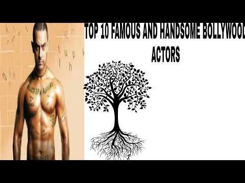 TOP TEN FAMOUS AND HANDSOME BOLLYWOOD ACTORS