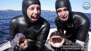 2014_05 - Подводная охота и рыбалка в Норвегии остров Хитра