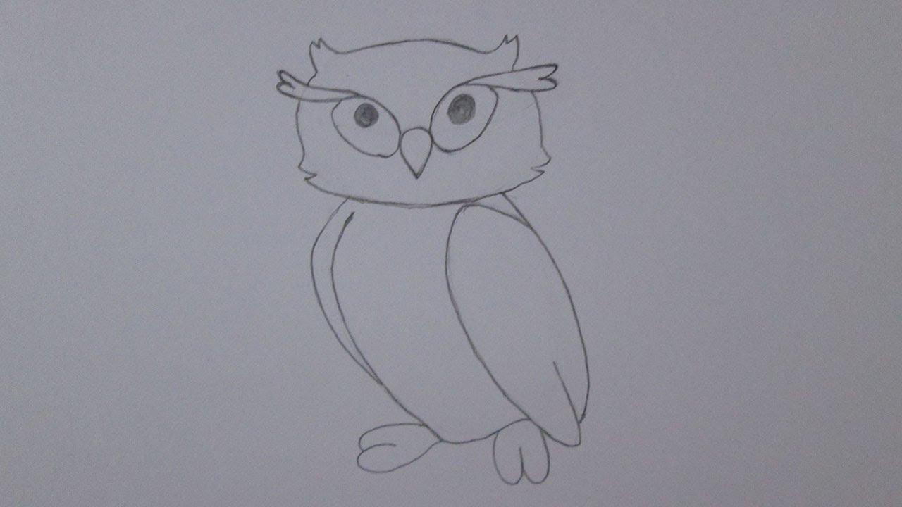 Como Desenhar Uma Coruja Youtube