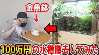 【ドッキリ】100万円の水槽ガチで撤去して金魚鉢に変えてみた 【ラファエル】