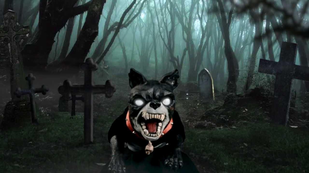 Spirit Halloween Owner