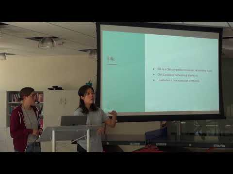 Namespaces and Networking in Linux and Cloud Foundry – Angela Chin and Amelia Downs