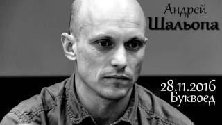 28 панфиловцев. Встреча с Андреем Шальопа 28.11.2016 в Буквоеде.