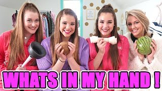 What's In My Hand Challenge! (Haschak Sisters & Friends!)