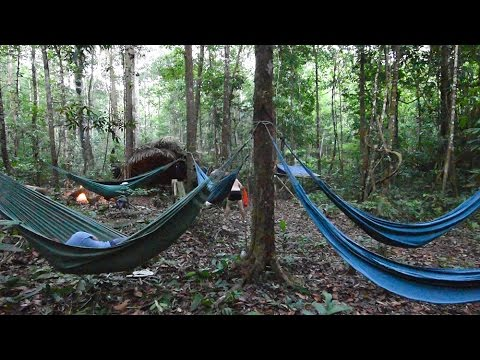 amazon jungle camping adventure on the urubu river amazon jungle camping adventure on the urubu river   youtube  rh   youtube