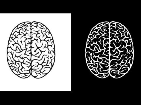 Race Race: Black And White On The Brain