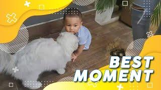 Kiano Penyayang Binatang Banget, So Sweet   Best Moment Ibu Pintar (14/11/20)