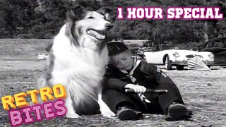 Lassie | 1 Hour Compilation | Lassie English Full Episodes  🐕