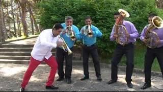 Ekrem Mamutovic-Meraklisko Banjsko Cuceko♫ █▬█ █ ▀█▀♫ 2015 MP3