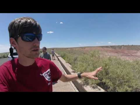 Adventures in the Petrified forest/ Day 3 Out West